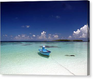 Maldives 09 Canvas Print by Giorgio Darrigo