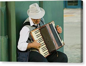 Male Accordion Player In Town Center Canvas Print