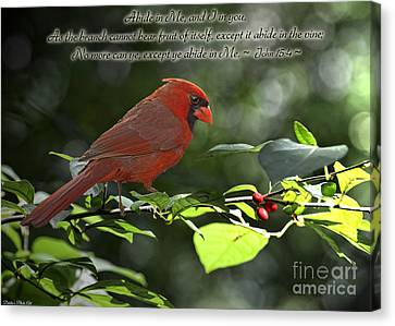 Male Cardinal On Dogwood Branch With Verse Canvas Print by Debbie Portwood