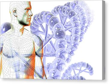 Male Figure With Dna Canvas Print