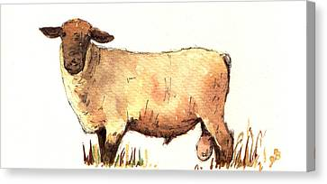 Farm Animal Canvas Print - Male Sheep Black by Juan  Bosco