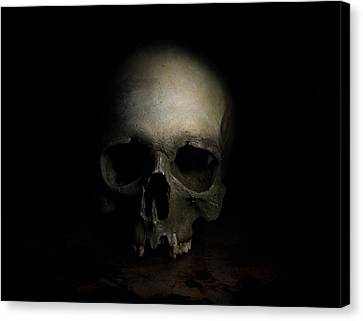 Male Skull Canvas Print