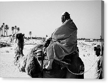 male tourist in desert clothing being led on the back of a camel into the sahara desert at Douz Tunisia Canvas Print by Joe Fox