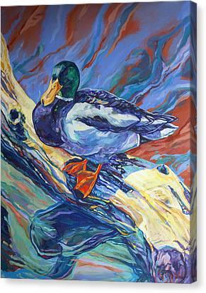Mallard Duck Canvas Print by Derrick Higgins