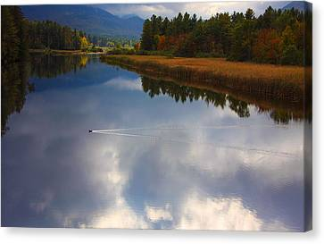 Canvas Print featuring the photograph Mallard Duck On Lake In Adirondack Mountains In Autumn by Jerry Cowart
