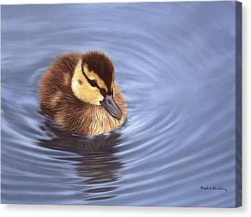 Ducklings Canvas Print - Mallard Duckling Painting by Rachel Stribbling