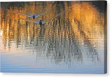 Mallard Pair At Kah Tai Lagoon Canvas Print
