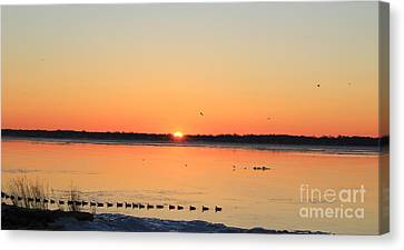 Mallards At Sunrise Canvas Print