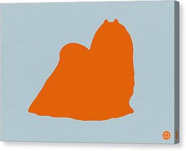 Maltese Orange Canvas Print by Naxart Studio