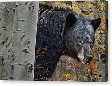 Mama Bear Canvas Print by Ed Hall