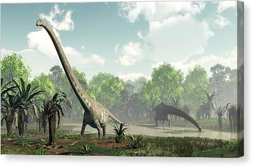 Mamenchisaurus Dinosaurs Canvas Print by Walter Myers