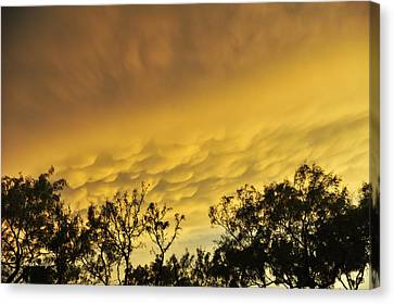 Canvas Print featuring the photograph Mammatus Clouds At Sunset by Karen Slagle