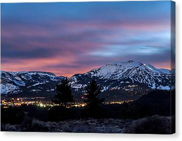Mammoth At Night Canvas Print by Cat Connor