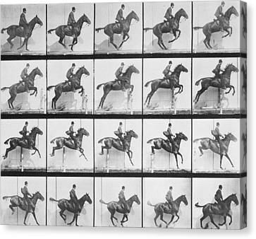 Man And Horse Jumping A Fence Canvas Print by Eadweard Muybridge
