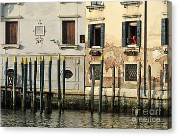 Man At Window By Piers In Venice Canvas Print by Sami Sarkis
