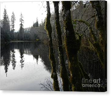 Man Made Hole Canvas Print by Laura  Wong-Rose