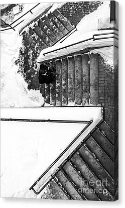 Man On Staircase Concord New Hampshire 2015 Canvas Print by Edward Fielding