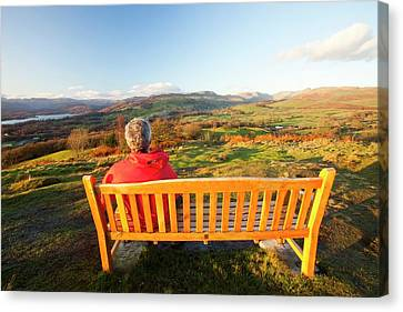 Park Benches Canvas Print - Man Sitting On A Memorial Seat by Ashley Cooper