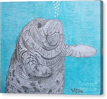 Manatee Close Encounter Canvas Print