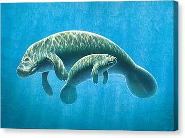 Manatee Canvas Print by JQ Licensing