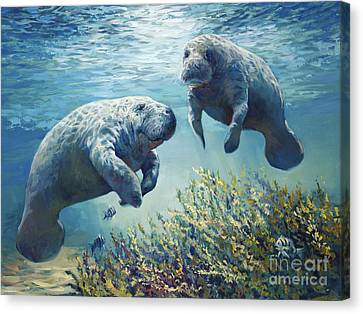 Manatee's Canvas Print by Laurie Hein