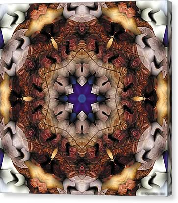 Canvas Print featuring the digital art Mandala 16 by Terry Reynoldson