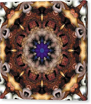 Mandala 18 Canvas Print by Terry Reynoldson