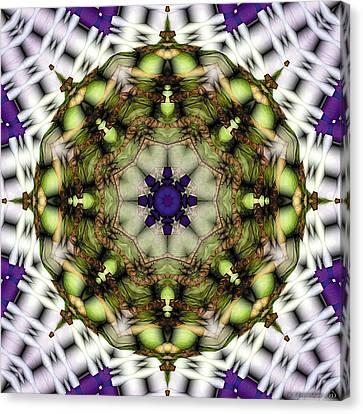 Mandala 21 Canvas Print by Terry Reynoldson