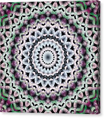 Canvas Print featuring the digital art Mandala 40 by Terry Reynoldson