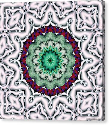 Mandala 8 Canvas Print by Terry Reynoldson
