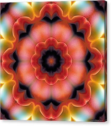Mandala 91 Canvas Print by Terry Reynoldson