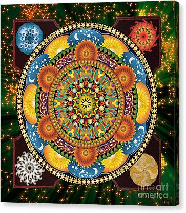 Mandala Elements Canvas Print by Bedros Awak
