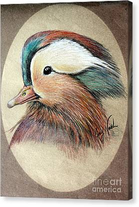 Mandarin Wood Duck Canvas Print by Joey Nash