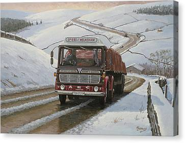 Mandator On Shap. Canvas Print by Mike  Jeffries