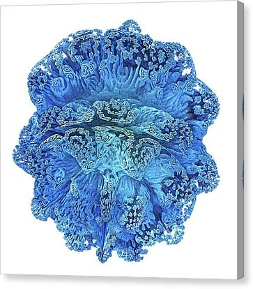 Mandelbulb Fractal Canvas Print by Alfred Pasieka