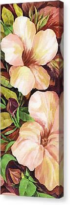 Mandevilla Canvas Print by Natasha Denger