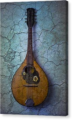 Mandolin Mystery Canvas Print by Garry Gay