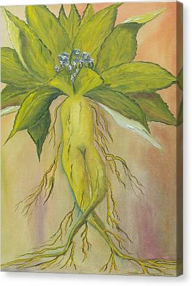 Canvas Print featuring the painting Mandrake by Conor Murphy