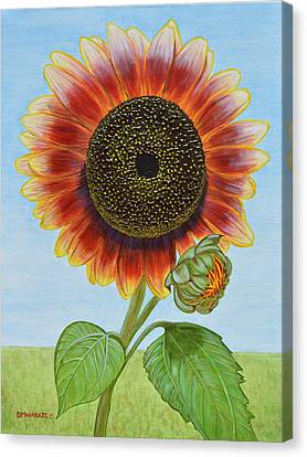 Mandy's Magnificent Sunflower Canvas Print