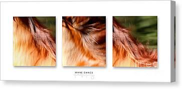 Mane Dance Triptych Canvas Print