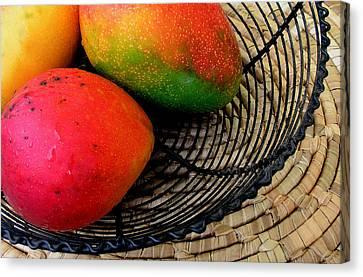 Mango In A Black Wire Basket Canvas Print