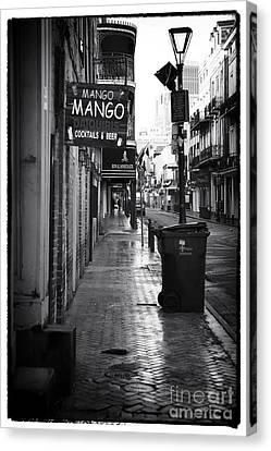Mango Mango Canvas Print by John Rizzuto