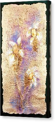 Mango Seed Tree Canvas Print