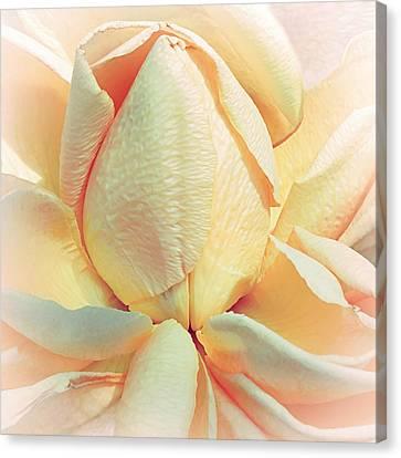 Mango Smoothie Canvas Print by Darlene Kwiatkowski
