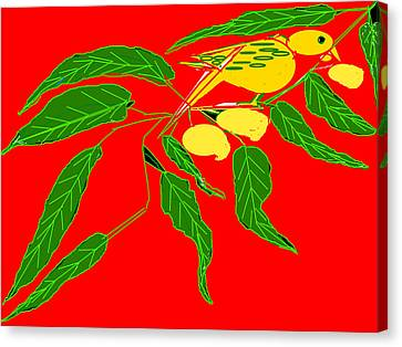 Mangoes And Parrot Canvas Print
