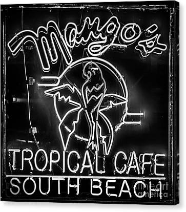 Mango's South Beach Miami - Black And White - Square Canvas Print by Ian Monk
