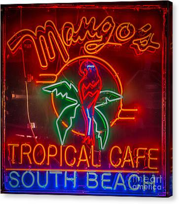 Mango's South Beach Miami - Hdr Style - Square Canvas Print by Ian Monk