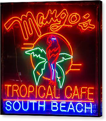 Mango's South Beach Miami - Square Canvas Print by Ian Monk