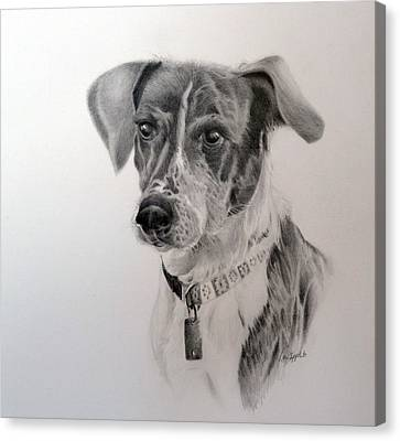 Man's Best Friend Canvas Print by Lori Ippolito