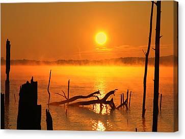 Mantis Sunrise Canvas Print